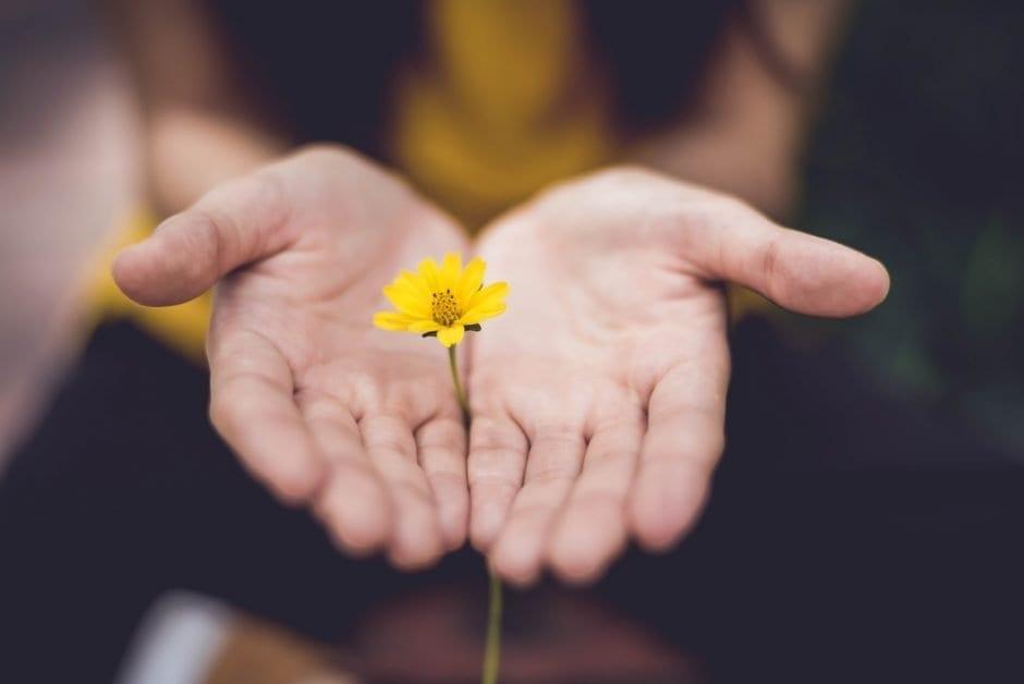 best hoa responsive site
